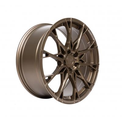 X1 Strom bronze matt painted